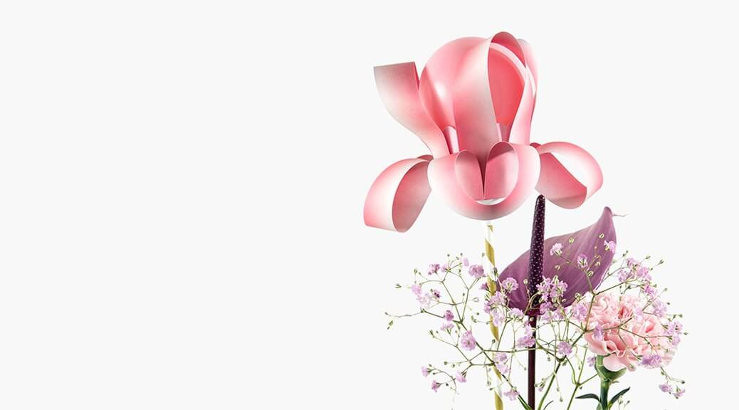 Cupcake-Blumen